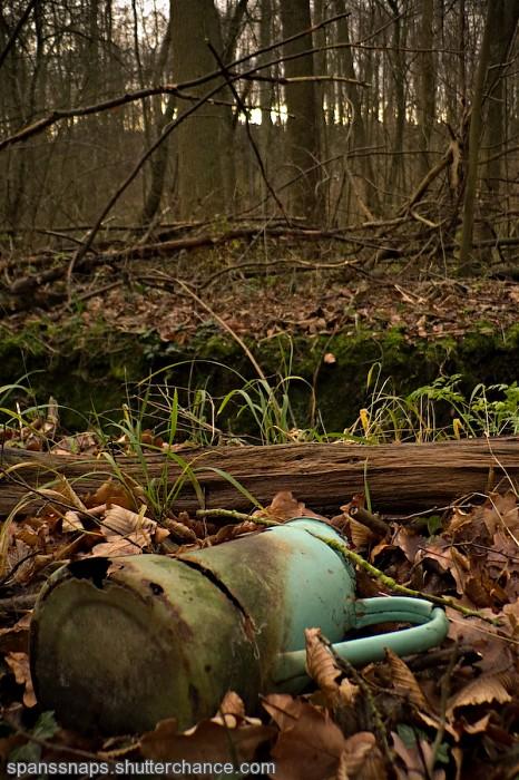 photoblog image 60